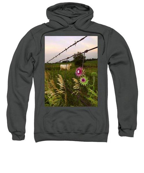 Wisconsin Evening Sweatshirt