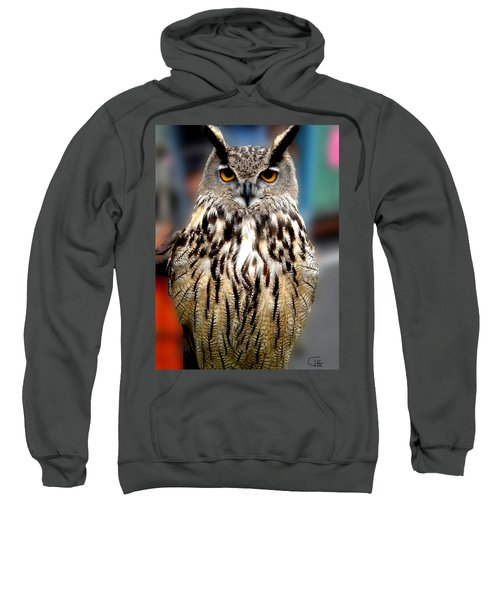 Wise Forest Mountain Owl Spain Sweatshirt