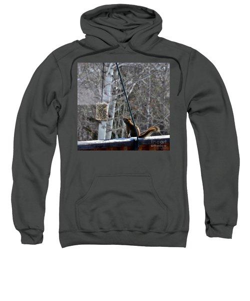 Wishin' 'n Hopin' Sweatshirt