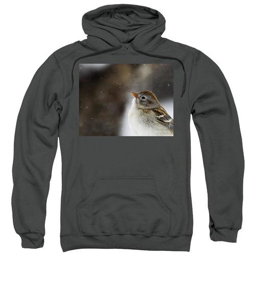 Wishing Upon A Snowflake  Sweatshirt