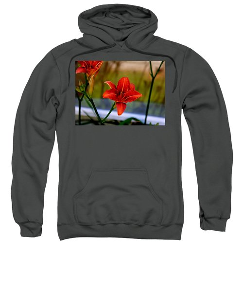 With Open Arms Sweatshirt