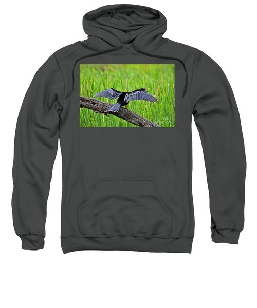 Wonderful Wings Sweatshirt