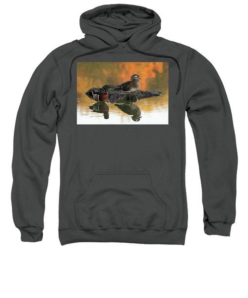 Wood Ducks Sweatshirt