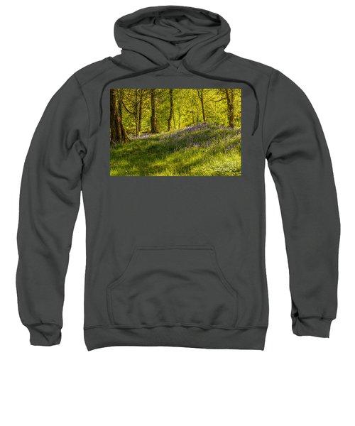 Woodland Of Bluebells Sweatshirt