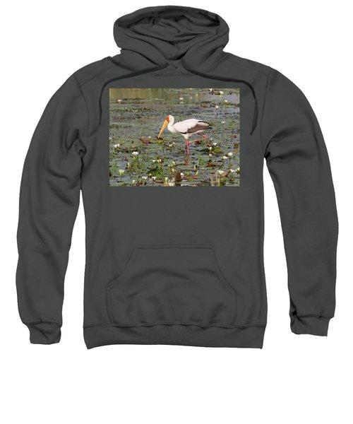 Yellow-billed Stork Mycteria Ibis Sweatshirt
