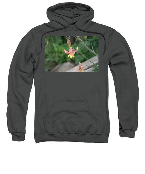 Yellow Columbine 2 Sweatshirt