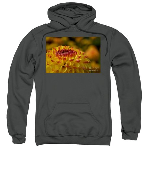 Yellow Dahlia Red Tips Sweatshirt