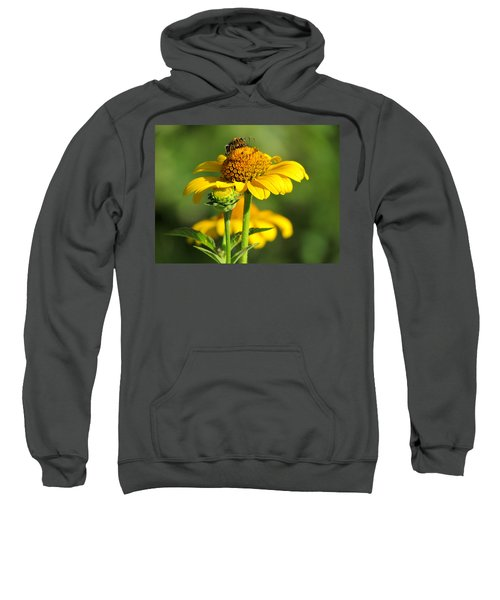 Yellow Daisy Sweatshirt