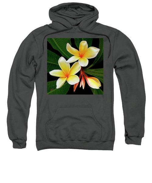 Yellow Plumeria Sweatshirt