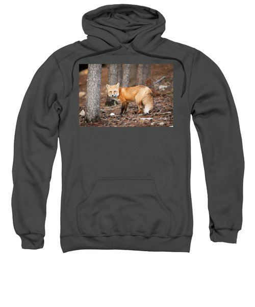 You Caught Me Sweatshirt