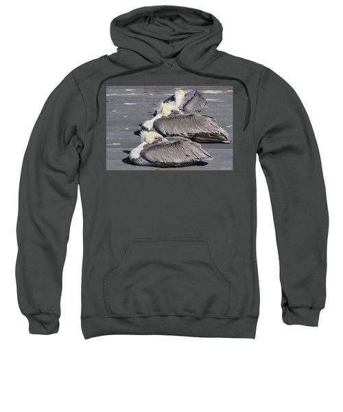 Young Pelicans Sweatshirt