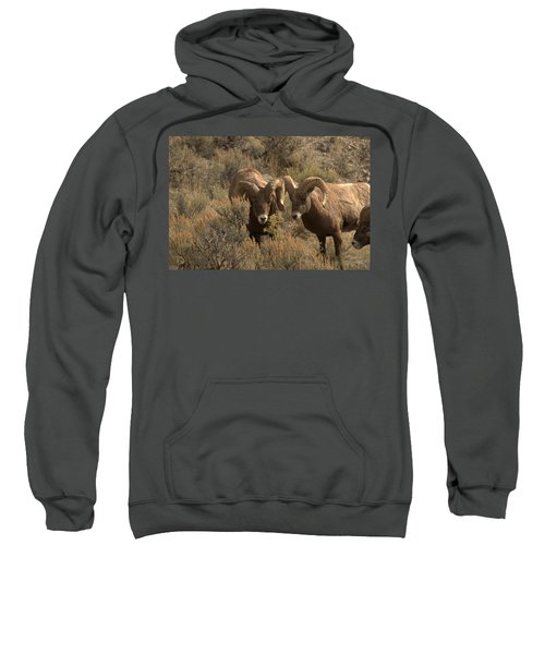 You Are In My Way Sweatshirt