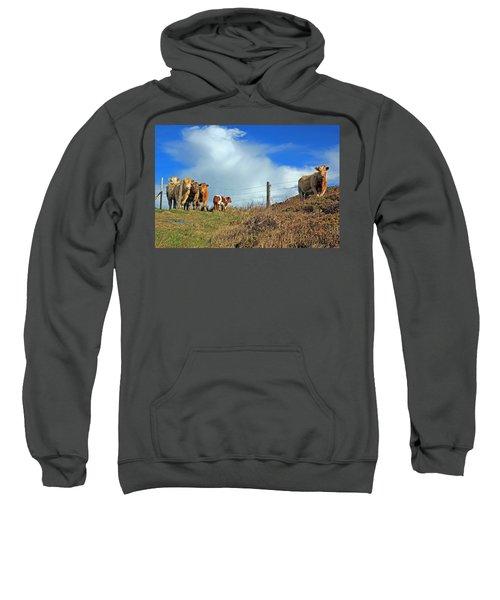 Youth In Defiance Sweatshirt