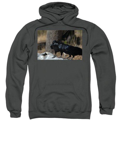 You've Got Something On Your Beak Sweatshirt