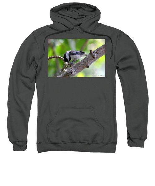 Yumyum Sweatshirt