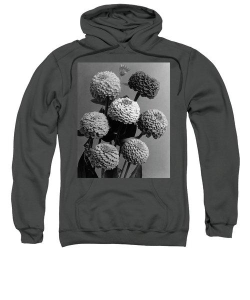 Zinnia Lilliput Flowers Sweatshirt