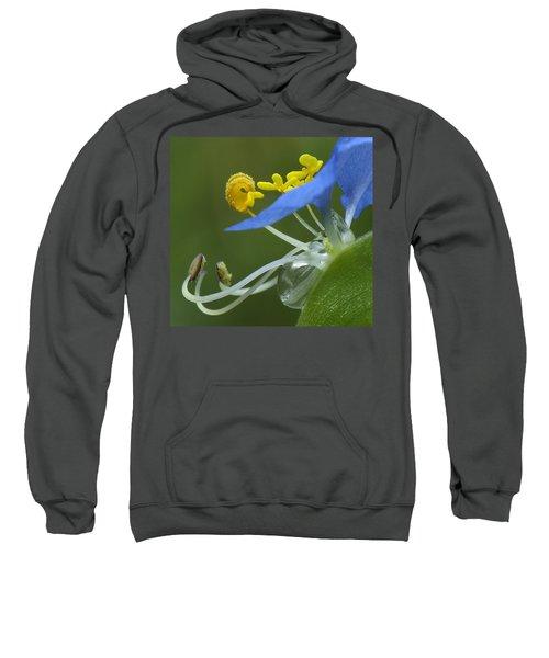 Close View Of Slender Dayflower Flower With Dew Sweatshirt