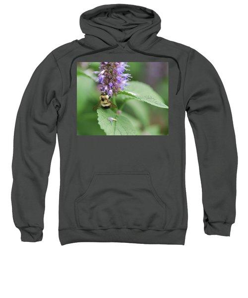 Afternoon Snack Sweatshirt