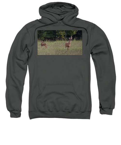 Alert Doe And Fawn Sweatshirt