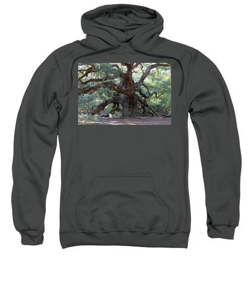 Angel Oak - Dont Climb Or Carve On The Tree Sweatshirt