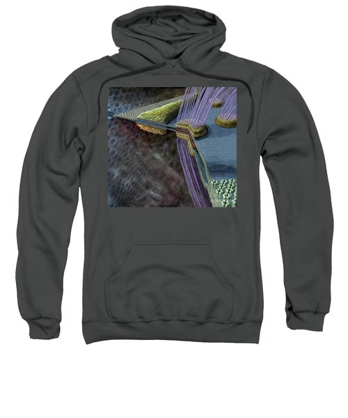 Animal Cell Junctions Sweatshirt