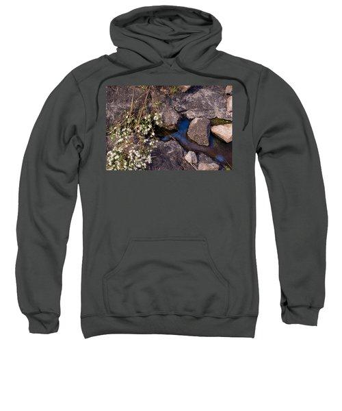 Another World IIi Sweatshirt