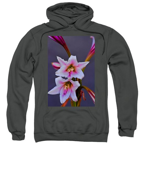 Asiatic Lily Sweatshirt by Bill Barber