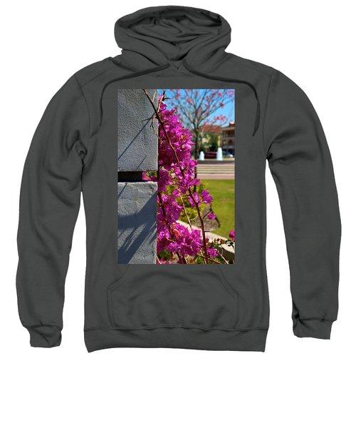 Ave Maria Walk Sweatshirt