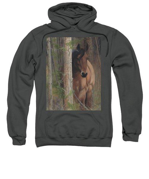 Bashful Sweatshirt