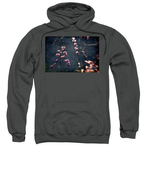 Beautiful Dream Sweatshirt