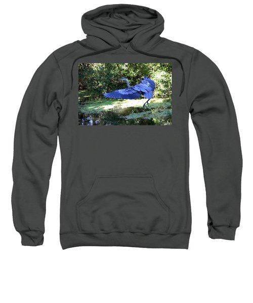 Big Blue In Flight Sweatshirt