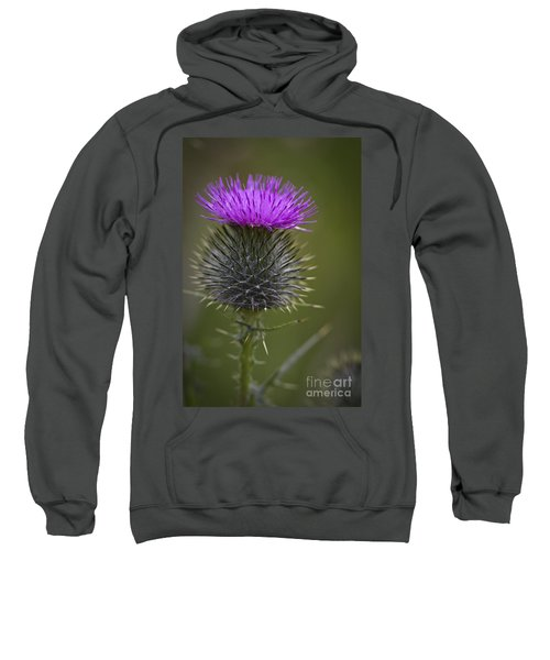 Blooming Thistle Sweatshirt