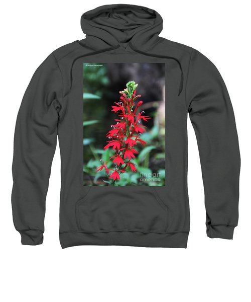 Cardinal Flower Sweatshirt