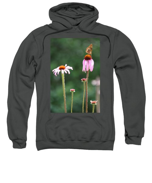 Coneflowers And Butterfly Sweatshirt
