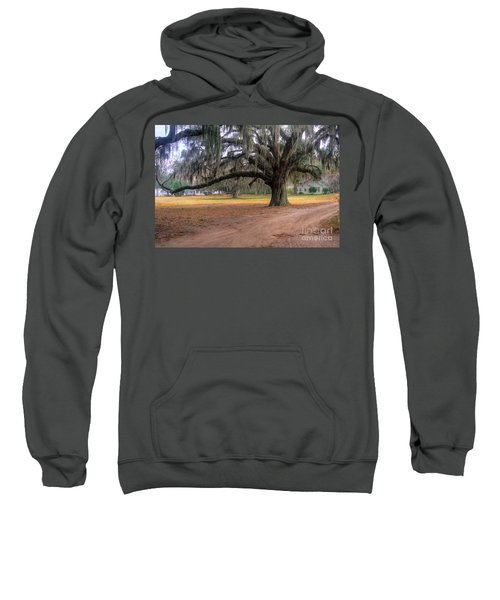 Coosaw Plantation Live Oak Sweatshirt