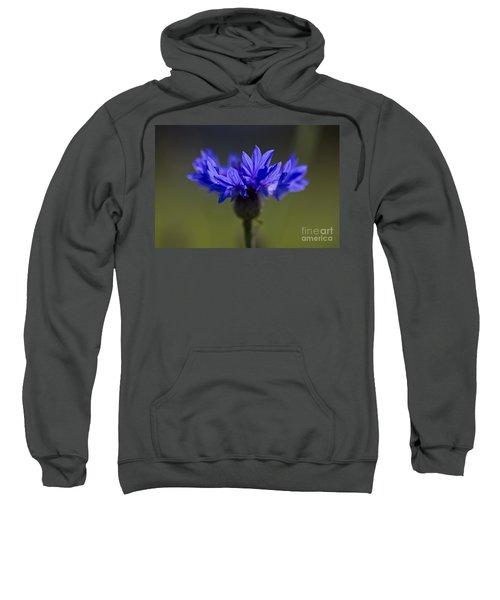 Cornflower Blue Sweatshirt