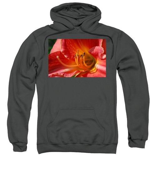Daylilly Close Up Sweatshirt