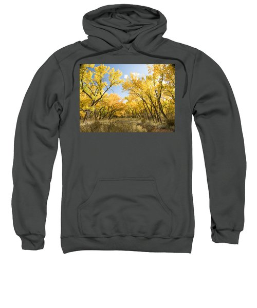 Fall Leaves In New Mexico Sweatshirt