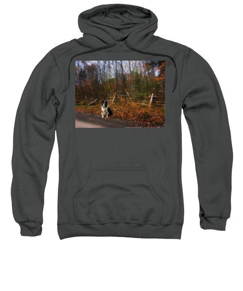 Fence With Moon Sweatshirt