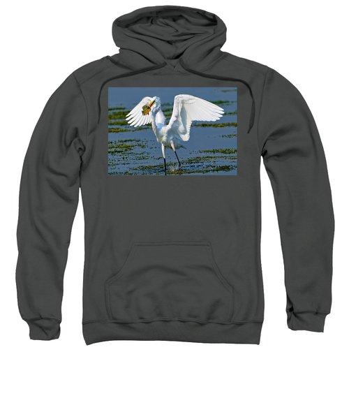 Fish'n In The Morning Sweatshirt