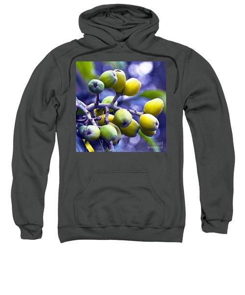 Sicilian Fruits Sweatshirt
