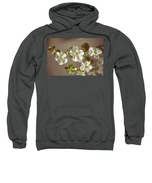 Giant Snowflakes Sweatshirt