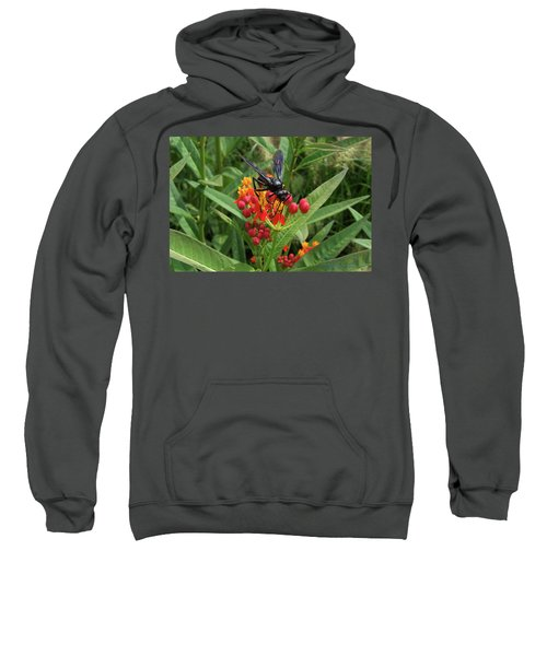 Giant Wasp Sweatshirt