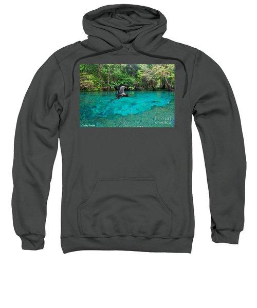 Ginnie Springs Sweatshirt