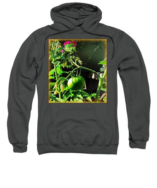 Green Tomatoes Sweatshirt