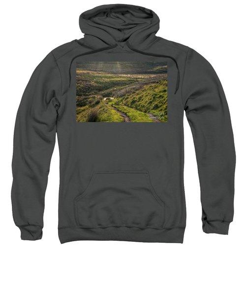 Icy Track Sweatshirt