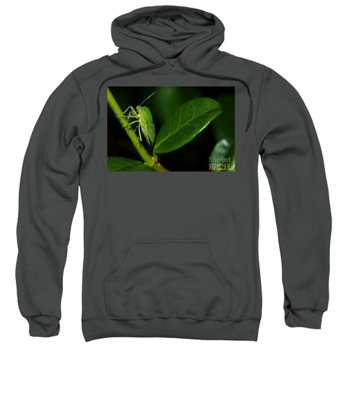 Leaf Me Alone Sweatshirt