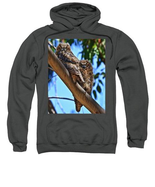 Lifes A Hoot Sweatshirt