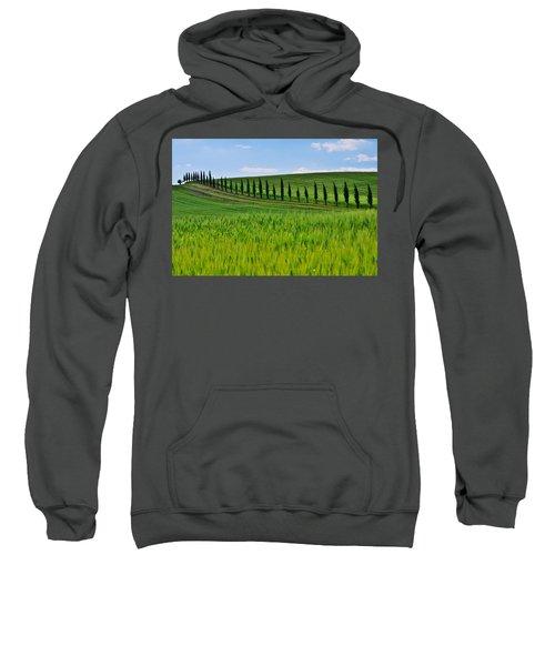 Lined Up Sweatshirt