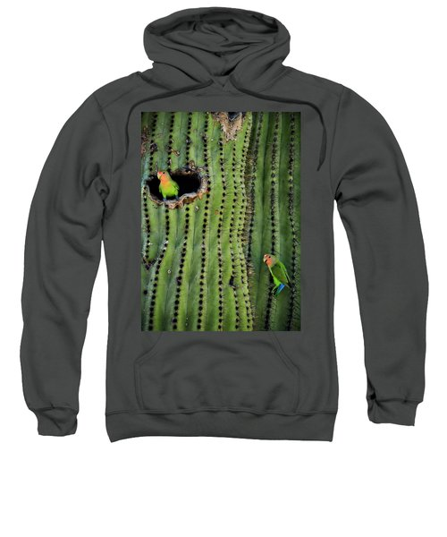 Lovebirds And The Saguaro  Sweatshirt by Saija  Lehtonen